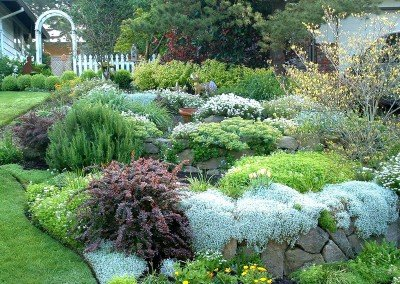 Lawns & Plantings