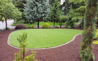 Maintaining your SYNLawn