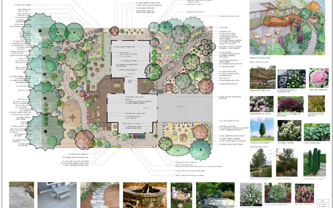 I've Hired a Landscape Designer, Now What? Making Sense of the Design Process
