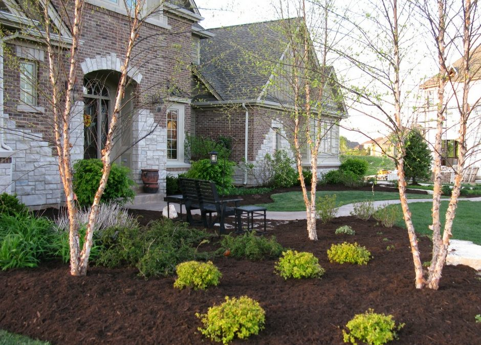 Benefits of Using Mulch