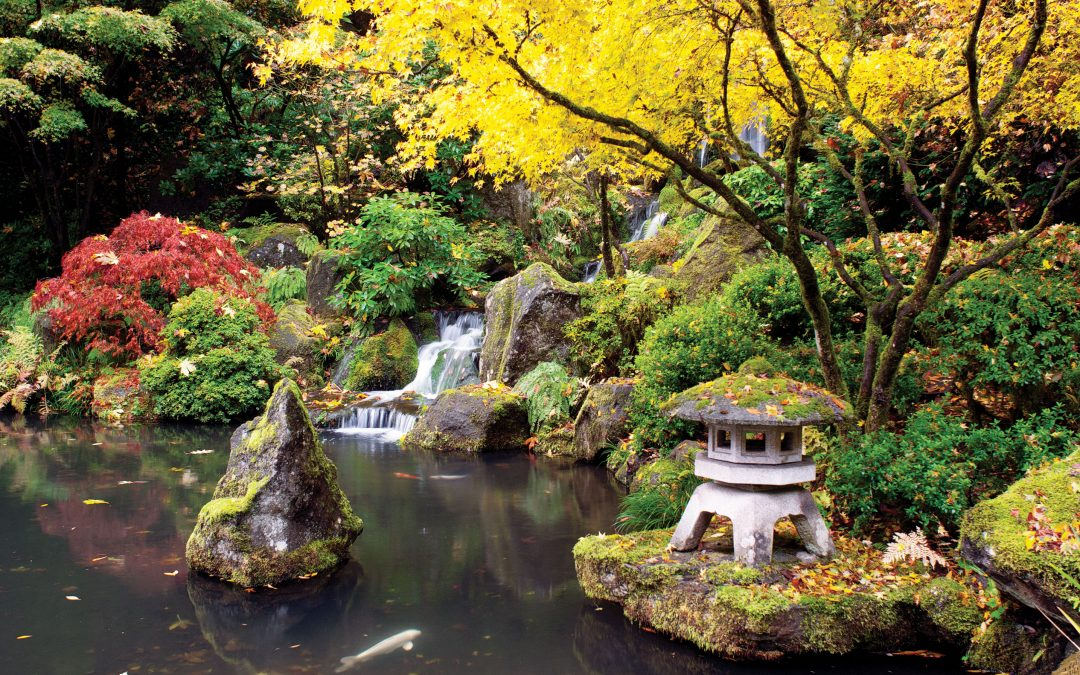 Key Elements For An Asian Inspired Garden Blessing Landscapes