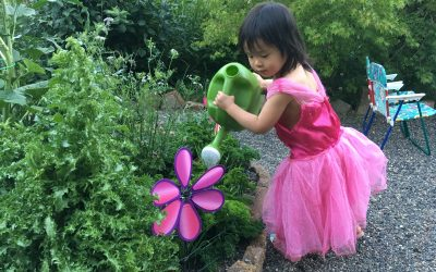 Creating a Kid-Friendly Garden… Without Breaking the Bank!