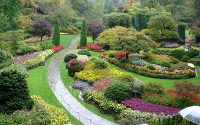 Gardening Palettes: Painting with Plants