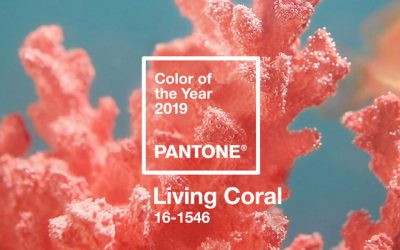 Adding Living Coral to your Garden