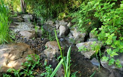 Is Your Backyard a Conservation Zone? The Reality of Developing in Environmentally-Sensitive Areas