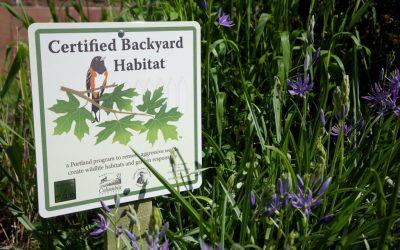 Get Backyard Habitat Certified!
